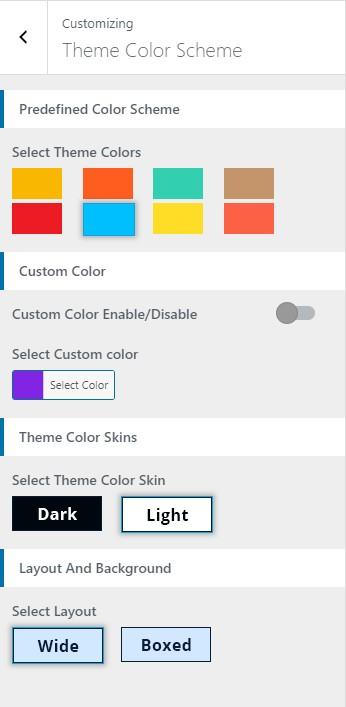 Designexo Pro Theme Color Scheme